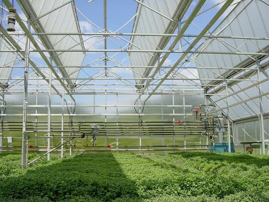 Sản phẩm Thép Nhật Quang có độ bền cao, được ứng dụng vào các công trình phục vụ cho nông nghiệp như: Hệ thống tưới tiêu, Khung nhà kính trồng nông sản, …